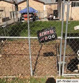 Beware of Smiling Dog
