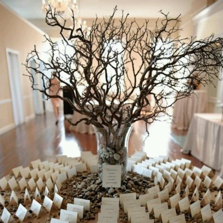 Diy Rustic Wedding Wish Tree: 89 Best Images About Wishing Tree On Pinterest
