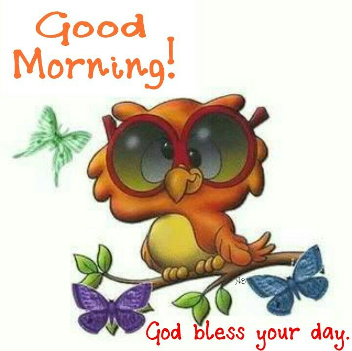 Good Morning God Bless Your Day : Good morning god bless your day daily blessings