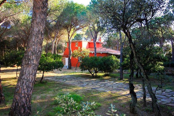 Seafront villa for sale - Villa a in pineta a 100 metri dalla spiaggia  #sardegna #sardinia #villa #immobiliare #realestate