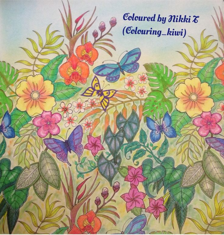 Magical Jungle By Johanna Basford Done With Polychromos And Prismacolor Pencils Chalk Background Coloring BooksColouringColored