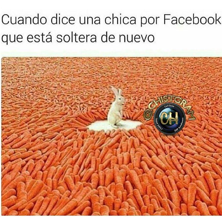 #moriderisa #cama #colombia #libro #chistgram #humorlatino #humor #chistetipico #sonrisa #pizza #fun #humorcolombiano #gracioso #latino #jajaja #jaja #risa #tagsforlikesapp #me #smile #follow #chat #tbt #humortv #meme #chiste #amigas #soltera #estudiante #universidad