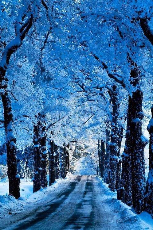 There's nothing more magical than the dreamy colors of winter