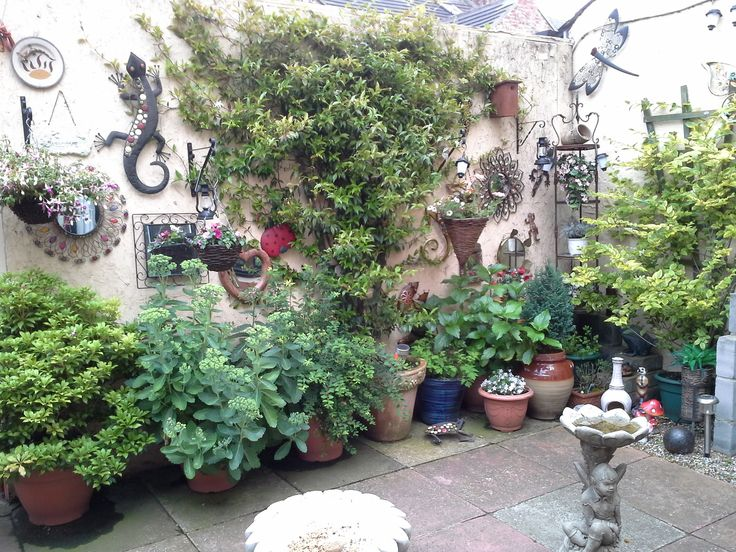 A small part of my garden I enjoy so much!!!
