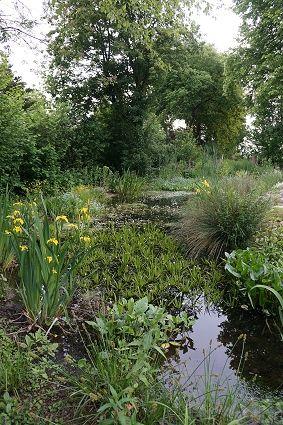 25 beste idee n over tuin bogen op pinterest tuin boog tuin ingang en houten boog - Hek begroeide ...