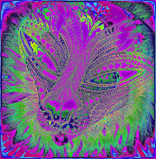 Kočka* Rosalia, Kresba:, Reprofoto:, JohanaJana Hájková,https://cz.pinterest.com/johanahajkova14/johanah-perokresby-reprofoto-obrazy/ @johanahajkova14