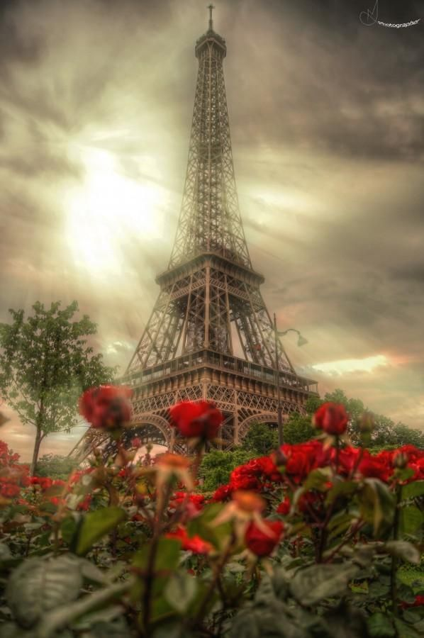 Eiffel Tower by Mohammed Abdo.. The Eiffel in a haze. TG