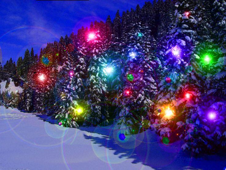 Winter: Lights Magic Nature Nights Winter Snow Colorful Christmas ...