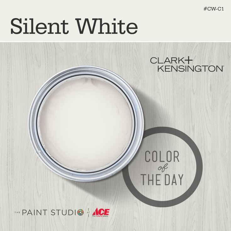 Color Of The Day Silent White By ClarkandKensington