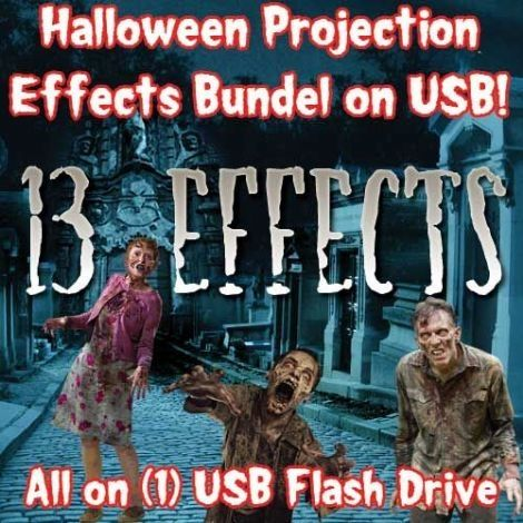 HALLOWEEN USB PROJECTION BUNDLE    YOUR 8GB USB MINI FLASH DRIVE COMES WITH:    1) Spirits in the Cemetary  2) Haunted Library  3) Giant Spiders  4) Stair Ghost  5) Ghostly Spirits  6) Aliens  7) Creepy Bugs  8) Dead Walkers  9) Evil Witch  10) Ghost Woman  11) Ghouls  12) Skeletons  13) Snakes    * All of these projector effects pre-installed on aScandisk 8GB USB Mini flash drive!    All you have to do is plug in your Holiday Projection LED Projector (Sold Seperatly), plug in your…