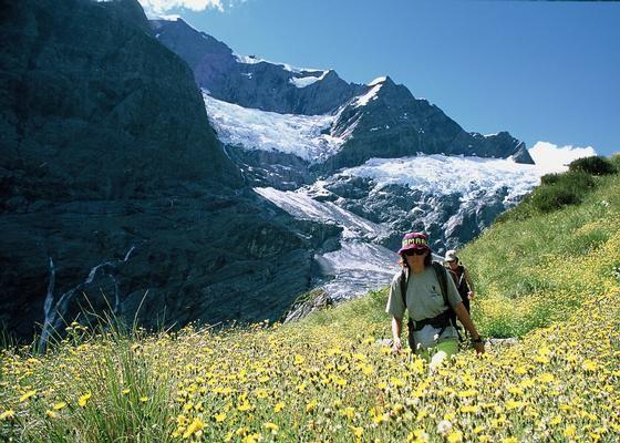 Rob Roy Glacier Walk