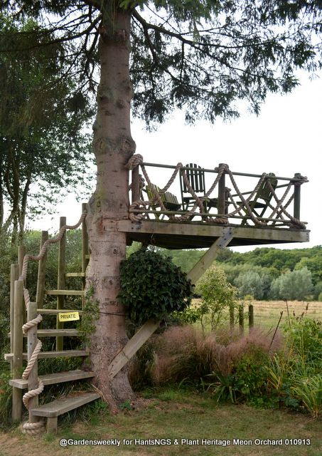 A tree house platform over looking a field in Hampshire