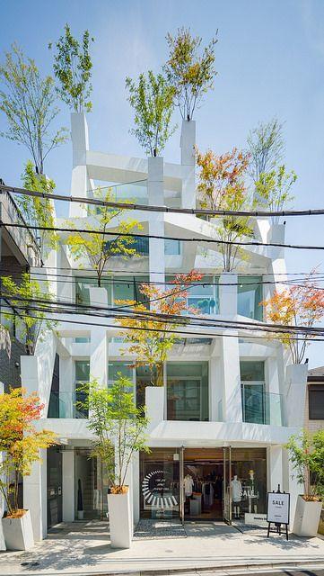 【写真】表参道ブランチーズ (Omotesando Branches)   Architectural Gravure -建築グラビア-