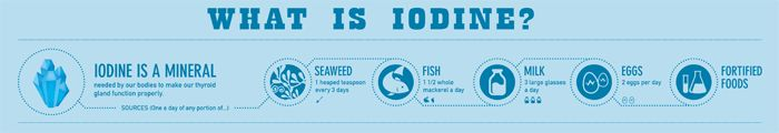 1 teaspoon of seaweed has the iodine equivalent of 3 large glasses of milk OR one and a half whole mackerel!