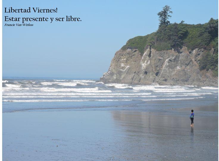 Orilla escarpada de la playa de rubíes, Washington. Península Olímpica.