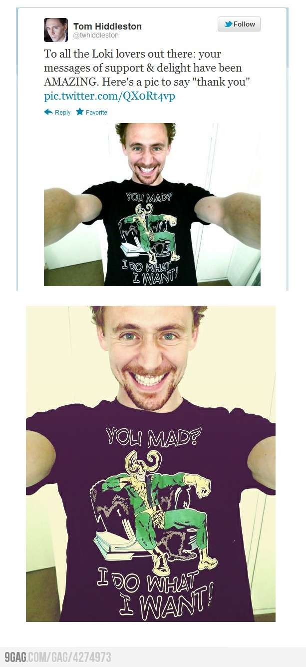 Loki wearing an awesome Loki shirt, your argument is invalid --- Oh my, I just cant get enough of this guy! Too adorable!