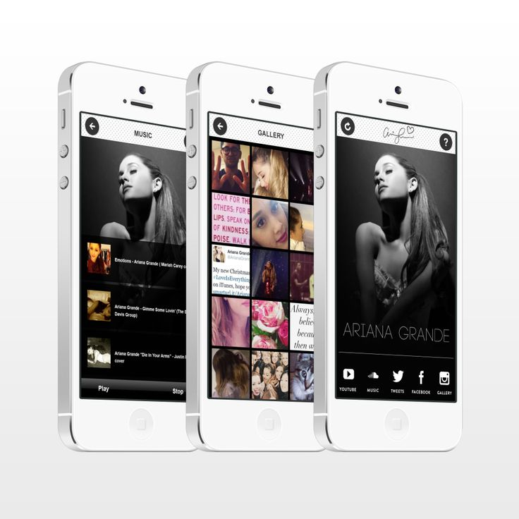 An example of the music celebrity app.