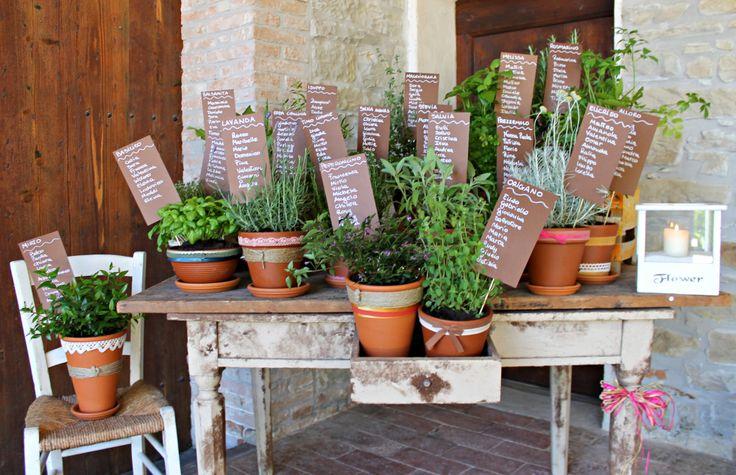 tableau de mariage with plants arometiche