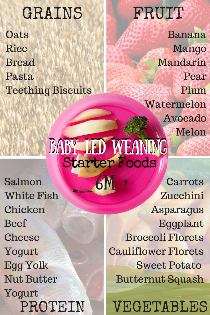 The best starter foods for Baby Led Weaning. Great ideas from 6 months on! Read more at familystylenutrition.com