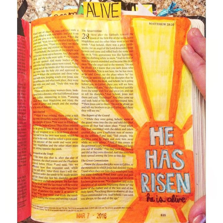 "The Resurrection -Matthew 28 The Easter story. It amazes me every time I read it. Jesus didn't have to die for me but He did. He did because He loves you & me oh so much! He loves us so much He took the punishment WE DESERVED! Then 3 days later He's back again! HE IS ALIVE NOW AND FOREVER! Now death where is your sting?? ""The moon and stars they wept The morning sun was dead The Saviour of the world was fallen His body on the cross His blood poured out for us The weight of every curse upon…"