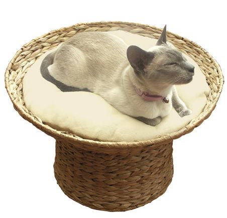 this cool looking raised banana leaf cat bed seems to only be available in the uk it gives. Black Bedroom Furniture Sets. Home Design Ideas