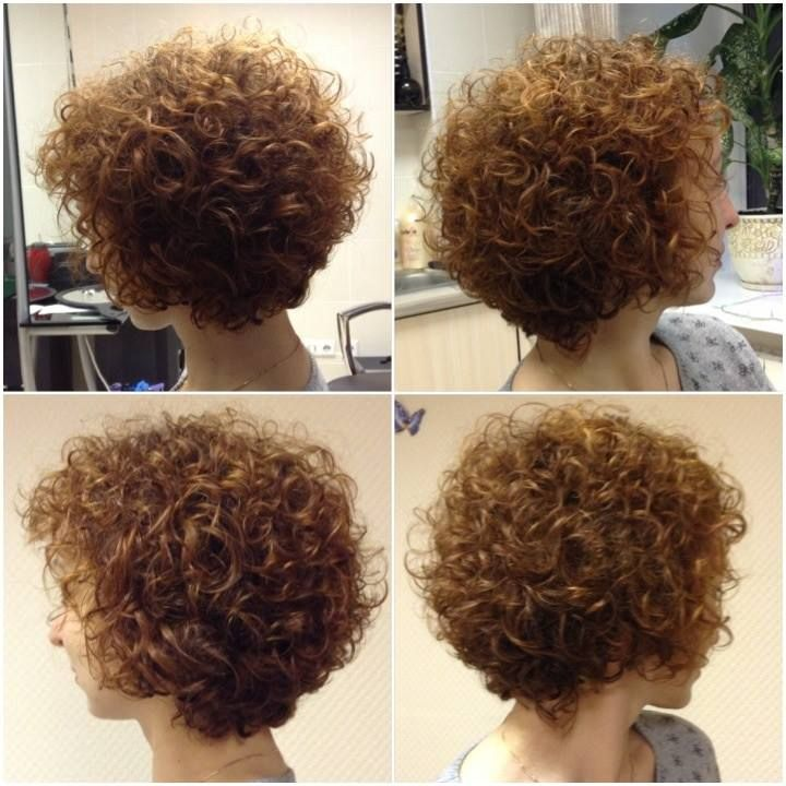 12 best images about permed hairstyles for fine short hair ...