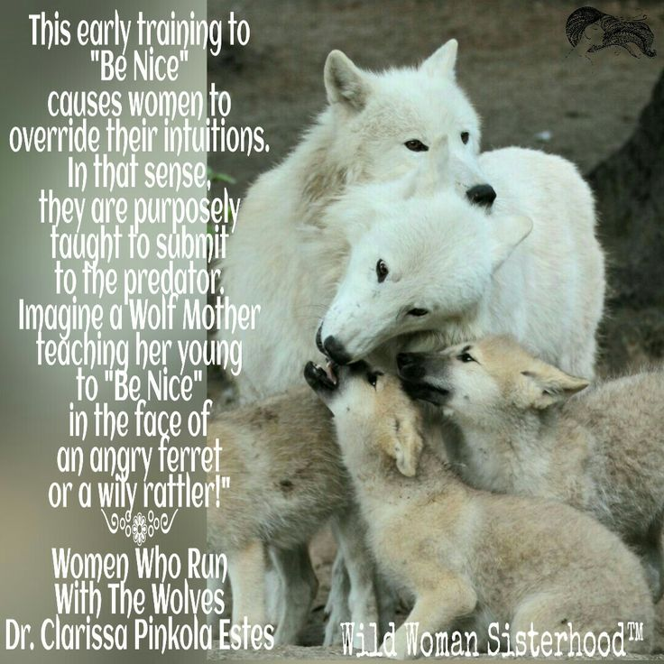 Women Who Run With The Wolves Quotes: 372 Best WOMEN Who Run With Wolves Images On Pinterest