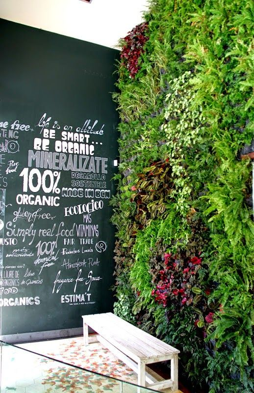 vertical garden in Organic shop