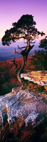 IMAGE DETAILS EARTH'S ELDER MOUNT MAGAZINE STATE PARK, ARKANSAS LIMITED EDITION - 950 ARTIST PROOF - 45 WG301