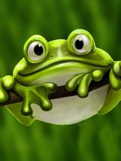 cute frog photos | Cute_Frog