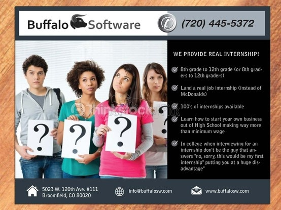 Buffalo software Flyer Designs