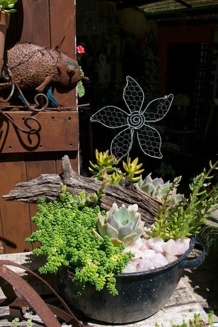 9 besten zinkwanne bepflanzen bilder auf pinterest zinkwanne bepflanzen wannen und balkongarten. Black Bedroom Furniture Sets. Home Design Ideas