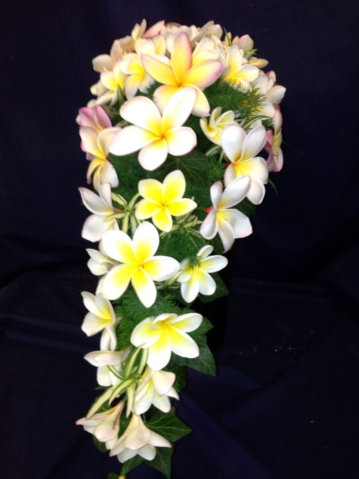 Frangipani trail bouquet. Little flower lane.