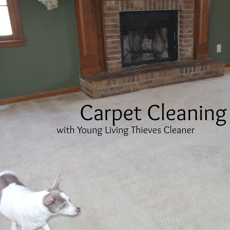 how to clean oil from carpet