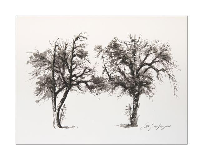 Cotentin, arbre