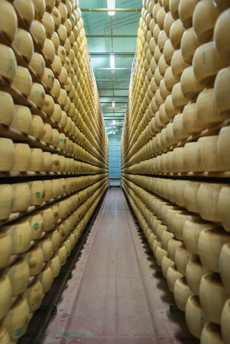 Giant wheels of traditionally-aged Parmigiano Reggiano cheese line the shelves of Hombre Organic Farm in Modena, Italy.
