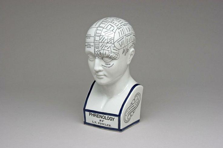 L.N. Fowler Phrenology Head  Vintage L.N. Fowler porcelain Phrenology head, 12 inches high. $45