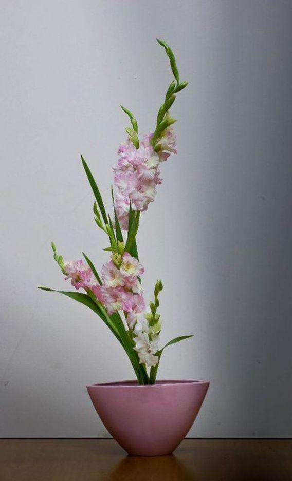 Beautiful Gladiolus Flower Arrangements For Home Decorations 25