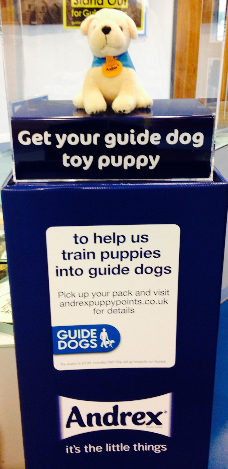 A celebration of the major partnership between Guide Dogs & Andrex. Very big in the UK & Australia.