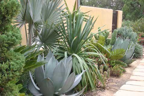 Arid Garden Design   narutonangis.tk