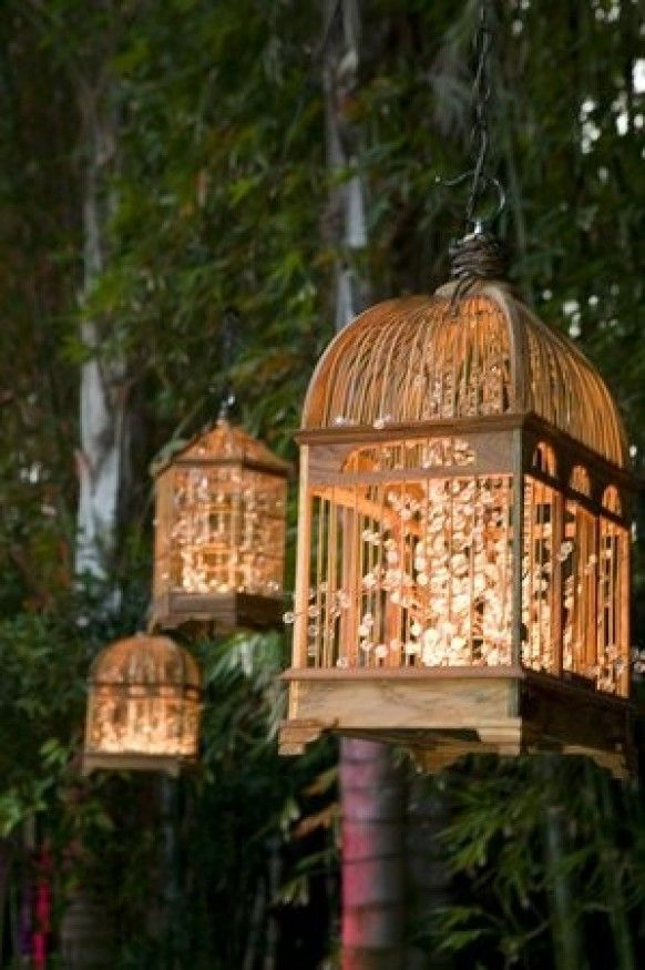 Wedding Light Options: Flowers in birdcages with small up-lighting.