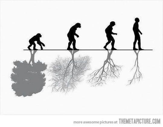 Human Evolution vs. Nature…
