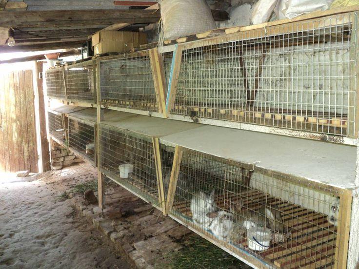 Клетки для кроликов фото видео