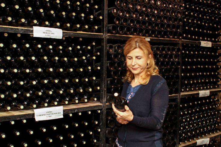 Domeniile Sahateni winery. Oenologist Aurelia Visinescu cellar choice.  https://www.facebook.com/AureliaVisinescuWines