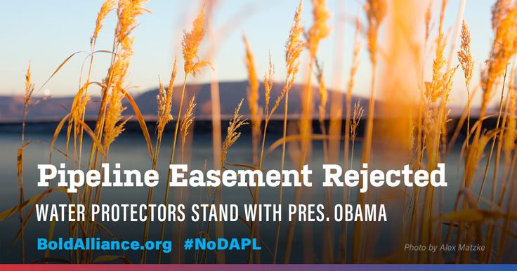 THANK YOU to the Water Protectors and Obama Administration for defending our land, water and climate from Dakota Access!  https://boldalliance.webaction.org/p/dia/action3/common/public/?action_KEY=19348