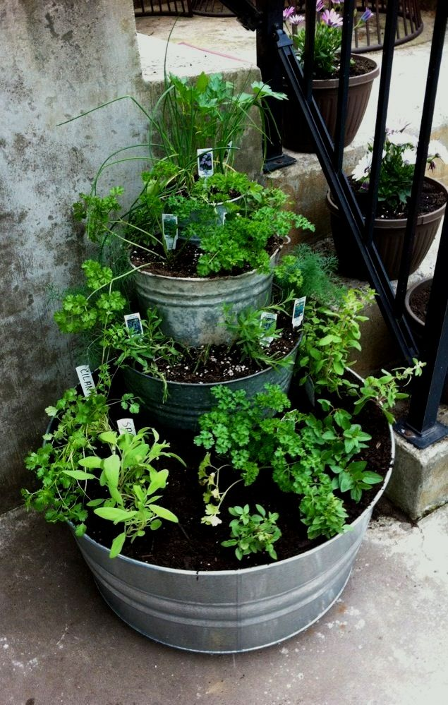I Have Always Wanted An Herb Garden I Think I Might Try This With Some Other Garden Easy Patio Herb Garden Outdoor Herb Garden Diy Herb Garden