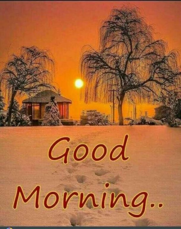 50 Christmas Winter Good Morning Quotes Good Morning Winter Good Morning Images Good Morning Christmas