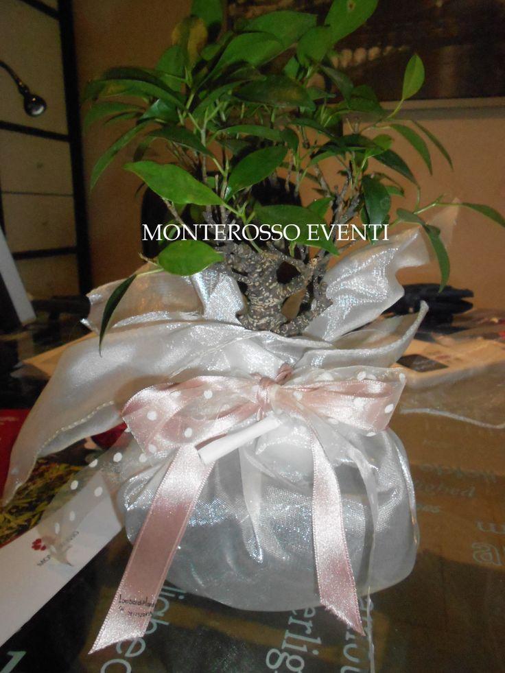 bomboniere bonsai scelte dalle spose 2013/2014