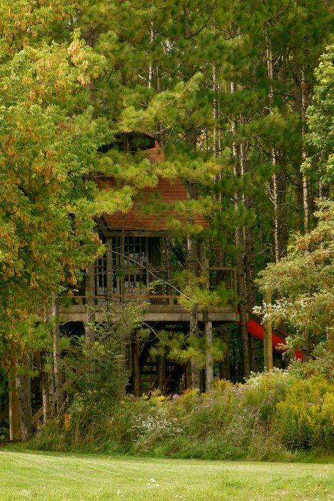 457 Best Treehouse Life Images On Pinterest Treehouses