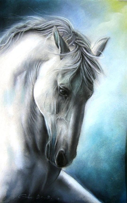 Horse is power through awareness. It brings strength and force through surrendering control. In turn, this allows the individual to move forward on a true path. Thus, horse medicine is the complete surrender of ego.